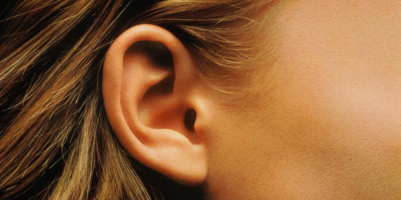 Comment perd-on son audition? Les explications du Dr Gilles Courtois de l'EPFL