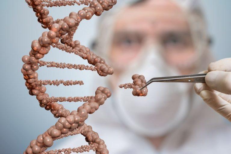 Un grand espoir pour la thérapie génique des surdités héréditaires