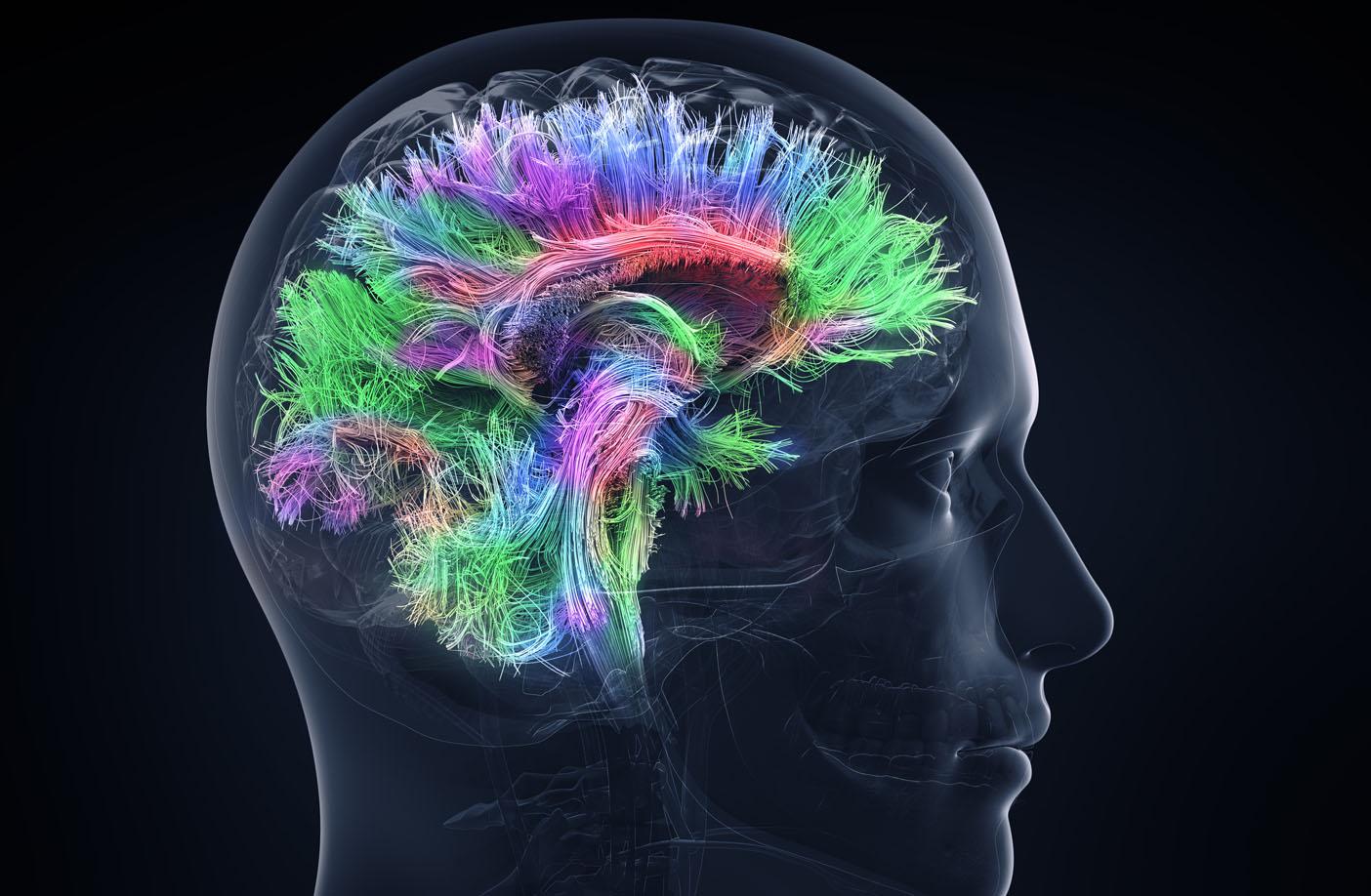 Régler les implants cochléaires via l'enregistrement de l'activité cérébrale sera bientôt possible